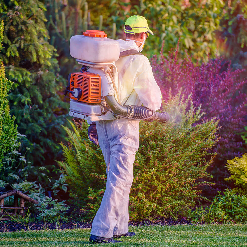 What To Know When Contacting Your Jacksonville Pest Control Specialist